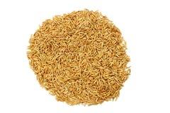 Droge rijst Royalty-vrije Stock Afbeeldingen