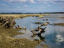 Droge rivier Drave stock fotografie