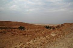 Droge rivier in Judaean-Woestijn, Israël Stock Foto's