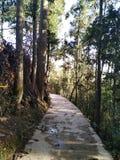 Droge rivierlandweg in de Straat van Wenshan Ma, Yunnan, China royalty-vrije stock afbeeldingen