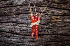 Droge rode Spaanse pepers Stock Foto