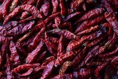 Droge rode Spaanse pepers die op een houten rek drogen Stock Foto's