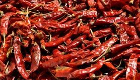 Droge Rode Spaanse peperspeper Stock Fotografie