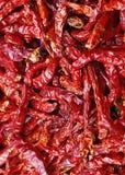 Droge roodgloeiende Spaanse pepers Stock Fotografie