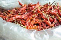 Droge roodgloeiende Spaanse pepers Stock Afbeelding