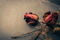 Droge Rose Flower op Steen, de Conceptie van de Geheugenliefde stock fotografie