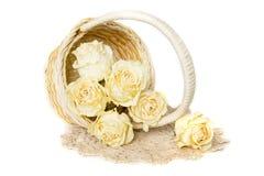 Droge rozen in mand met doily Stock Foto