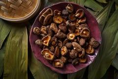 Droge Shiitake schiet eetbaar Aziatisch voedsel als paddestoelen uit de grond royalty-vrije stock fotografie