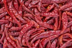 Droge Spaanse peper Stock Afbeeldingen