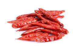Droge Spaanse peperpeper Stock Afbeeldingen