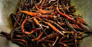 Droge Spaanse pepers, gebraden Spaanse peper stock fotografie