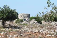 Droge steenhut met koepel in bosje van olijfbomen in Salento in Puglia in Itali? royalty-vrije stock afbeeldingen