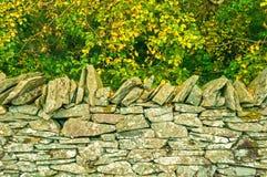 Droge Steenmuur, Autumn Trees Royalty-vrije Stock Fotografie