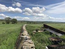Droge steenmuur Wensleydale Yorkshire Stock Foto's