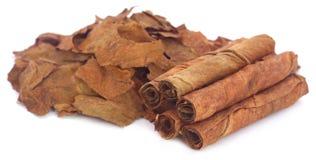 Droge tabaksbladeren Stock Afbeeldingen