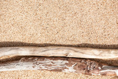 Droge takken op het zand Stock Afbeeldingen