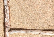Droge takken op het zand Stock Afbeelding