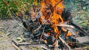 Droge takkenbrandwond op grond, takken van bomenbrandwond op brand stock footage