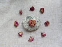 Droge tearosesknoppen en steen op linnenachtergrond Royalty-vrije Stock Fotografie