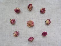 Droge tearosesknoppen op linnenachtergrond Royalty-vrije Stock Afbeelding