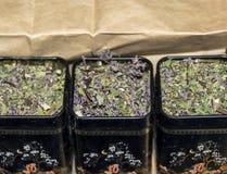 Droge thee Royalty-vrije Stock Afbeeldingen