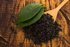 Droge thee en groene bladeren royalty-vrije stock afbeelding