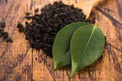 Droge thee en groene bladeren stock afbeelding