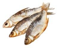 Droge vissen Stock Afbeelding