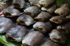 Droge Vissen bij het dorsen van mand Stock Afbeelding