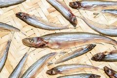 Droge vissen die in de zon op bamboeraad drogen, Thais Voedsel stock foto