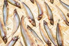 Droge vissen die in de zon op bamboeraad drogen, Thais Voedsel stock afbeeldingen
