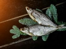 Droge vissen in het nieuwe jaarthema royalty-vrije stock afbeelding