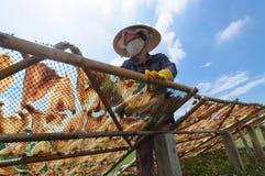 Droge vissen in Mekong Delta Stock Foto's
