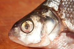 Droge vissen op de lijst Snack aan bier Stock Afbeeldingen