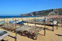 Droge vissen, Portugal Royalty-vrije Stock Fotografie