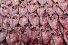 Droge vissen in vissenmarkt Stock Afbeeldingen