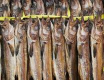 Droge vissen voor verkoop Stock Foto