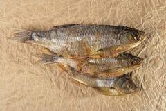 Droge vissensnack stock afbeelding