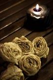 Droge witte rozen Stock Foto