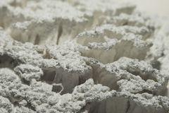 Droge witte verf op het varkenshaar van de rolmacro stock afbeeldingen
