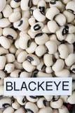 Droge zwarte eyed bonen met etiketclose-up Royalty-vrije Stock Foto's