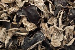 Droge zwarte paddestoel Royalty-vrije Stock Afbeeldingen