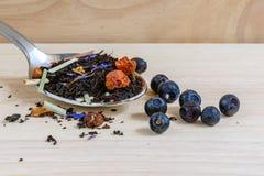 Droge zwarte thee op lepel met bosbessen stock fotografie