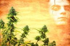 Drogenabhängigkeitkonzept Stockfotos