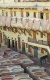 Drogend Leer - Looierijen in Fes Marokko royalty-vrije stock afbeelding