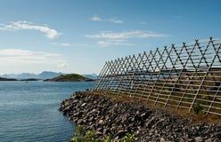 Drogend rek voor Stokvis in Lofoten Royalty-vrije Stock Afbeelding