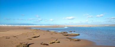 Drogende seagrass op landengte van zand tussen Vreedzame oceaan en Santa Maria-rivier bij Rancho Guadalupe Sand Dunes - Californi royalty-vrije stock fotografie