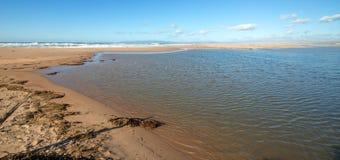 Drogende seagrass op landengte van zand tussen Vreedzame oceaan en Santa Maria-rivier bij Rancho Guadalupe Sand Dunes - Californi royalty-vrije stock afbeelding
