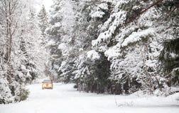 Drogi jazda na zimy lasowej drodze Zdjęcie Royalty Free
