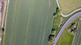 Drogi krzywa przez pszenicznych poly zbiory wideo